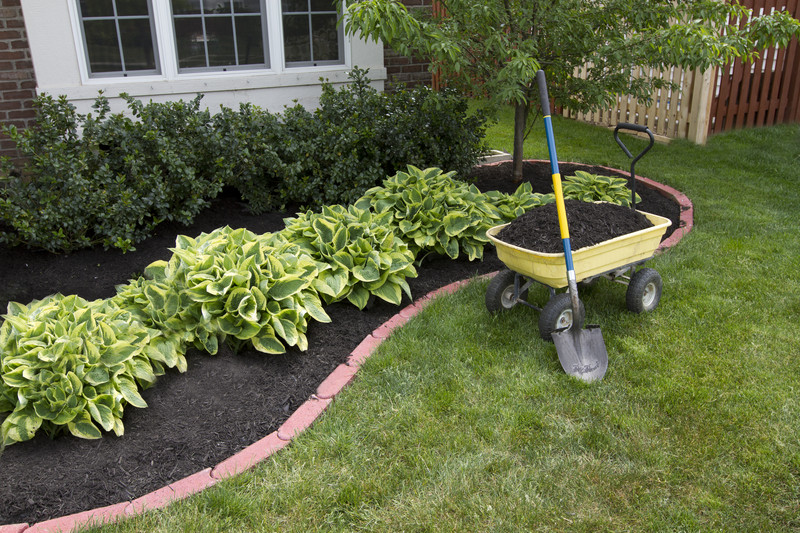 Mulching bed around the house and bushes, wheelbarrel along with a showel - (Photo: © Can Stock Photo Inc. / oocoskun)